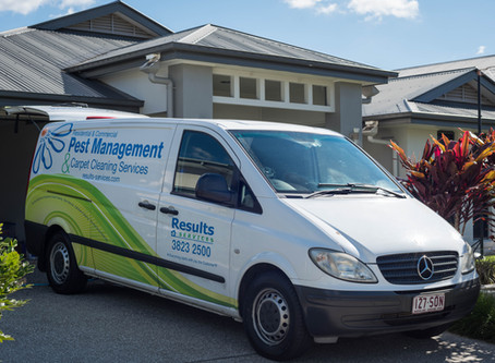 Results Home Services Open over Ekka Week