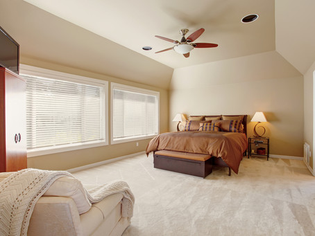 Pest Control and Carpet Cleaning Packages