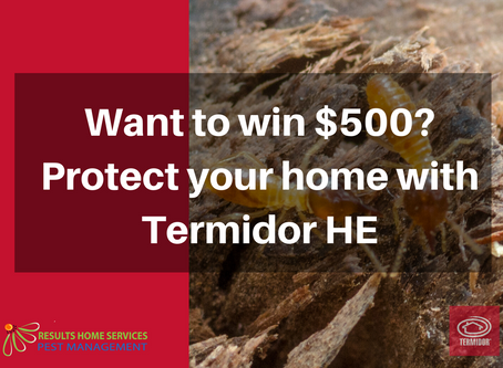 Protect your home with Termidor HE and win!