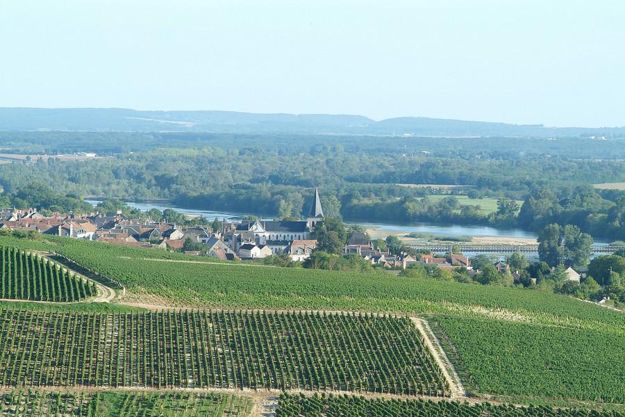 Pouilly-sur-Loire- BIVC-Thierry Martrou.