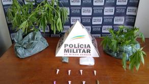 Drogas são apreendidas pela PM em Vilanova