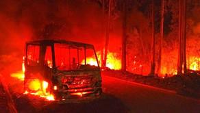 Micro-ônibus é consumido pelas chamas em incêndio na MG-108