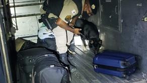 Policiais apreendem drogas em Vilanova e Realeza