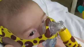 Bebê de Caputira com AME mobiliza web e tenta arrecadar R$ 12 mi para curar doença