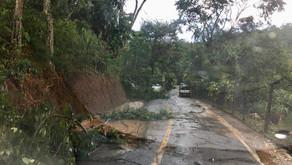 Chuva e vento arrancam árvores e provocam estragos em Manhuaçu