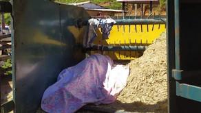 Trabalhador Rural morre em trituradora de capim