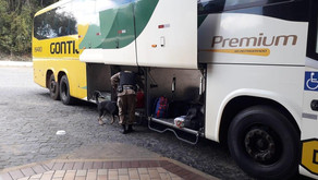 Drogas são apreendidas em ônibus em Realeza