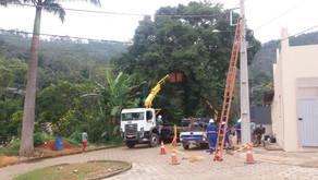 Prefeitura de Manhuaçu corta arvores com risco de queda em Realeza