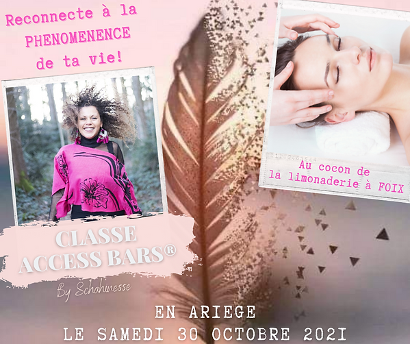 ACCESS BARS ariege.png