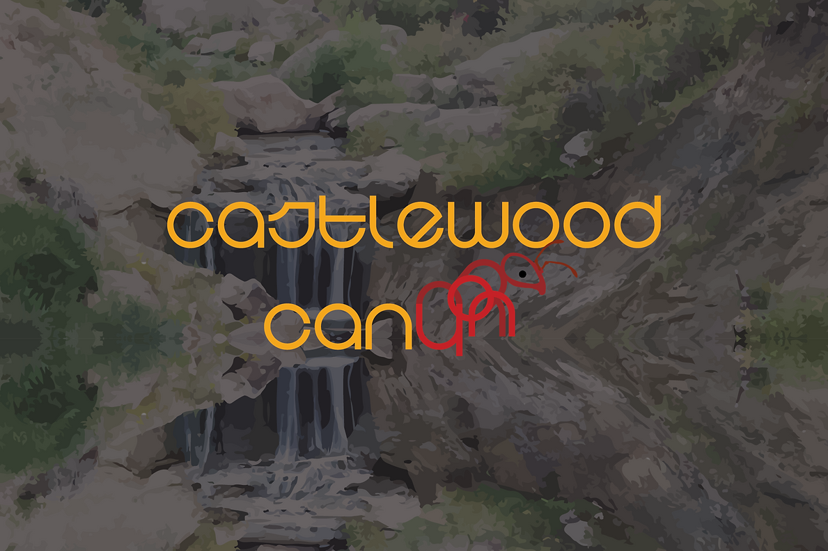 Ants-of-Castlewood-canyon.png