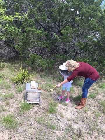 honeybees, bees, beekeeper, great oaks farm, leander tx