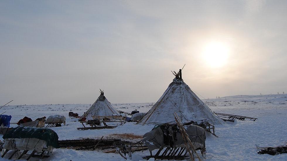 RUSIA, Los últimos nómadas de Siberia (los nenets de Yamalia)