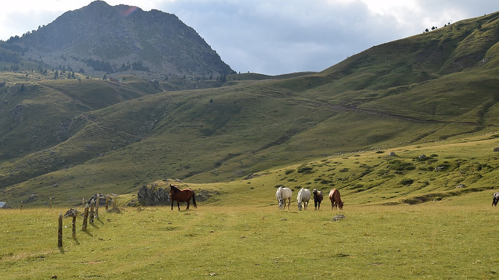 ALBANIA,  Trek Sur de Albania