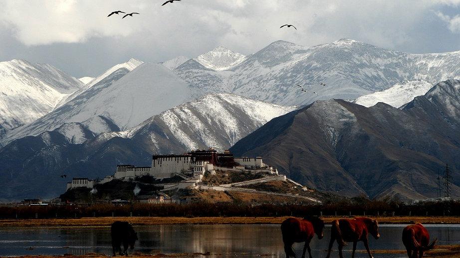 CHINA – TIBET, La Cima del Mundo