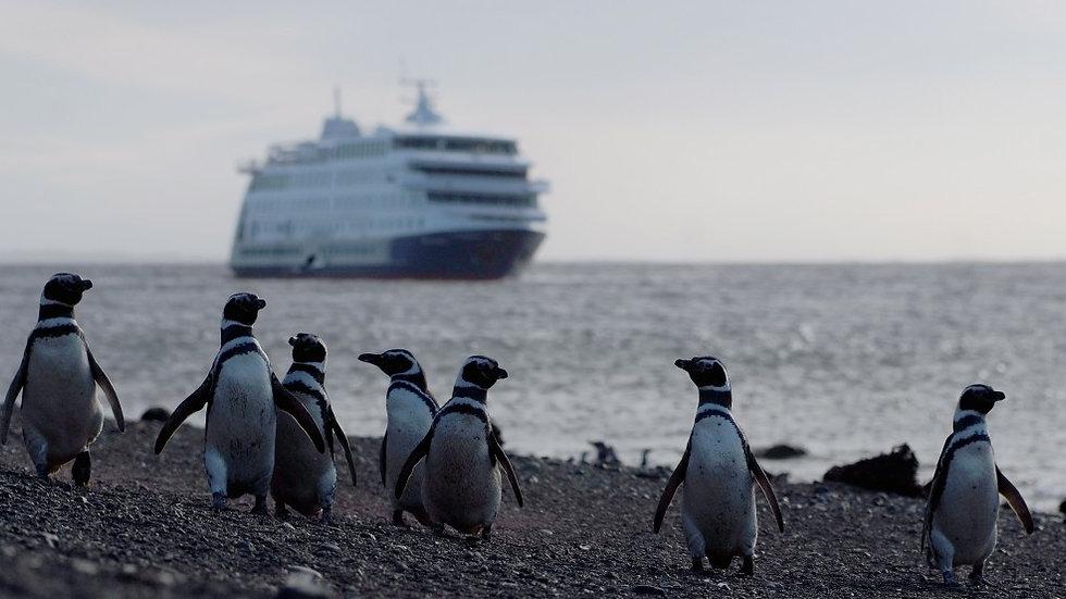 ARGENTINA, CHILE, Patagonia con Cruceros Australis