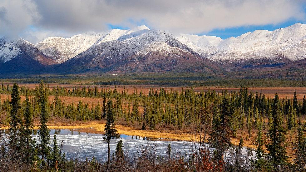 ALASKA,  Alaska Experience