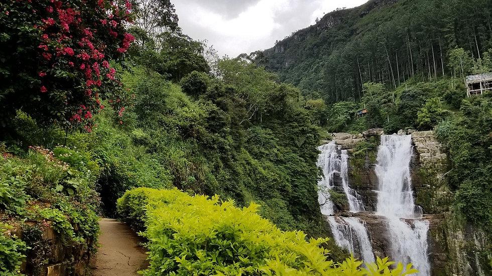 SRI LANKA, El Jardín del Edén