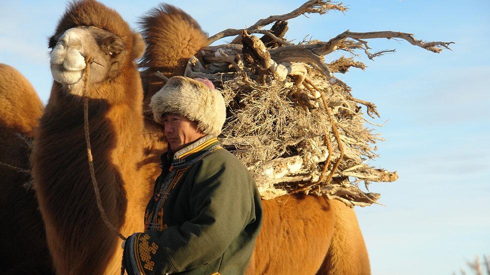 KIRGUISTÁN – MONGOLIA, En tierra de Nómadas
