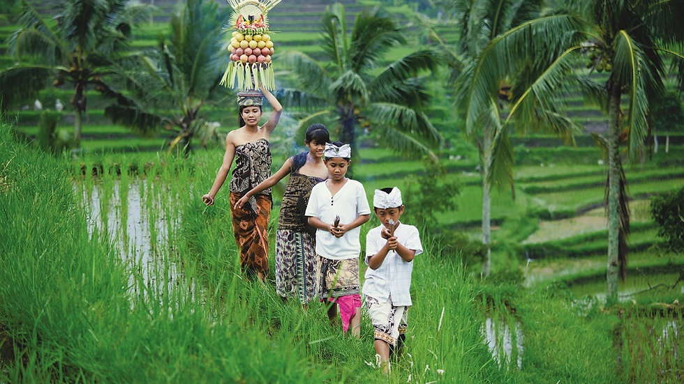INDONESIA, Bali Experience