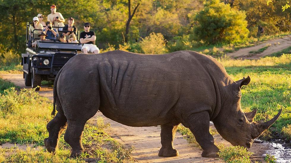 SUDÁFRICA, Explora Sudáfrica