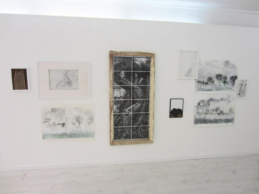 Mycorhizes-salle 1