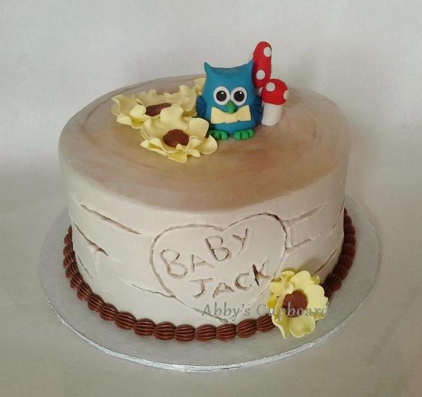 owl cake 6_28_14b