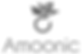 amoonic_logo (1).png