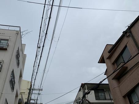 1/28 木 晴れ