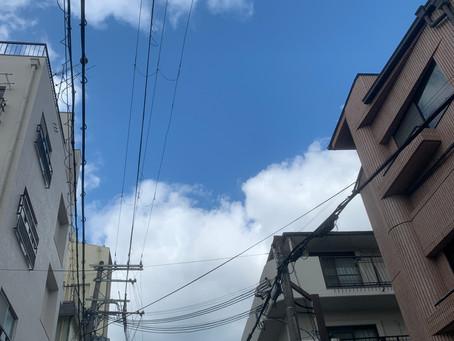 1/31 日 晴れ