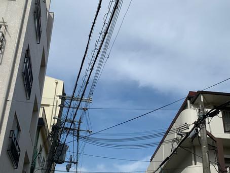 1/15 金 晴れ