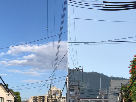 良い天気でした