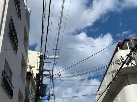 2/17 水 晴れ風強く寒い