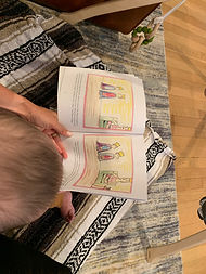 The Princes' Dilemma children's picture book