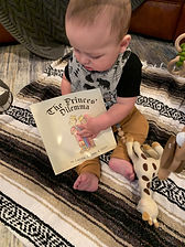 The Princes' Dilemma Picture book