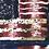 "Thumbnail: ""My Beautiful America"""
