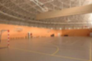 l.centro-deportivo-municipal-alfredo-goy