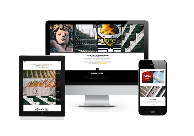 Till Asset management brochure Website design.jpg