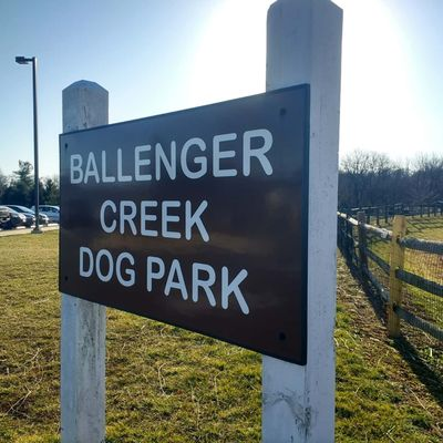 bc_dogpark.png