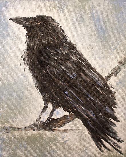 """Curious Crow #2""   matted 8""x10"" Fine Art Print"