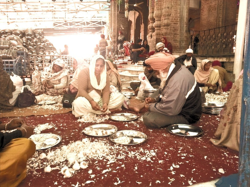 At the langar, I spent a big part of my day peeling garlic.