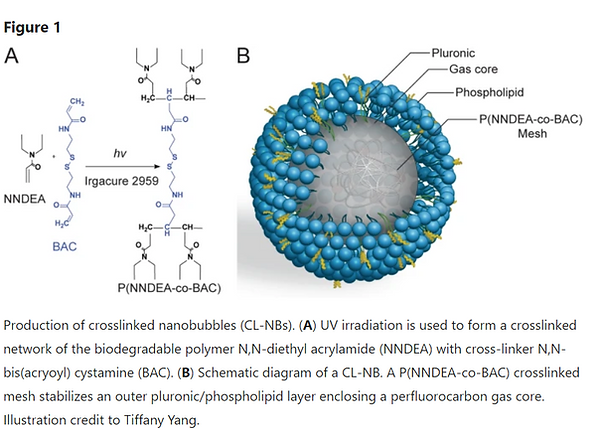 nanobubble_diagram.png