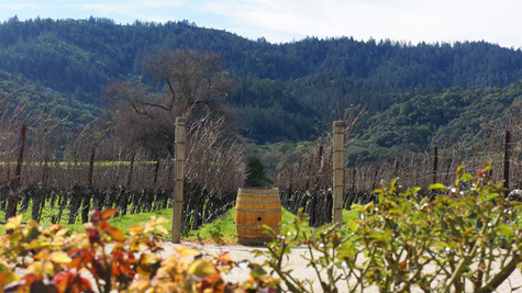 Weekend Getaway to Calistoga: Just Do It!