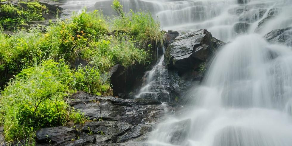 Amicalola Falls Hike and Picnic