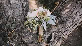 flowers in tree.jpg