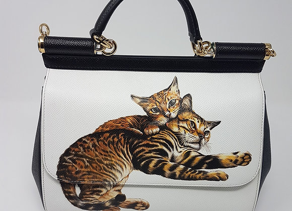 Dolce & Gabbana Miss Sicily Cats
