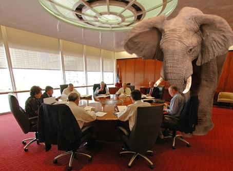 Ficción: El elefante en la habitación