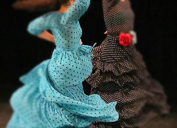 Flamenco pro dospělé