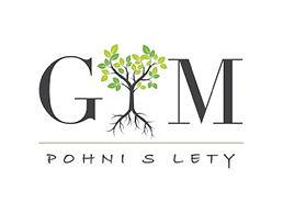 logo POHNI S LETY