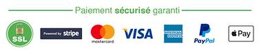 paiement sécurié garanti, visa, mastercard, paypal, ssl, paiementn en ligne, eshop, ecommerce
