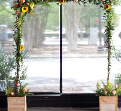 Sunflower Birch Arch